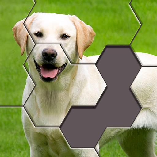 Hexa Jigsaw Puzzle™33.01 Android Mtodded file download (Unlimited money,Mod) apk no roo