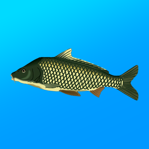 True Fishing. Fishing simulator  1.14.4.670 (Unlimited money,Mod) for Android