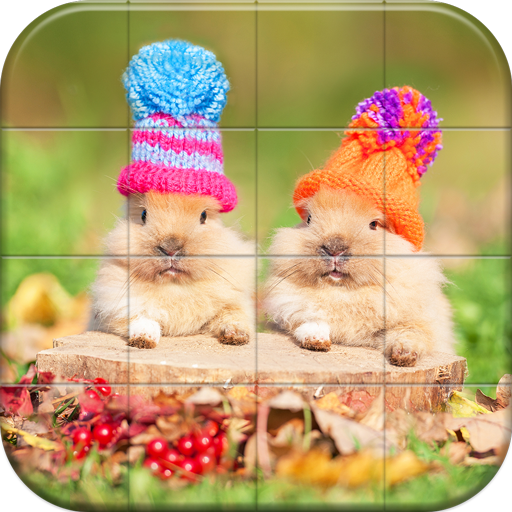 Lovely Pet Puzzle  Android Modded file download (Unlimited money,Mod)1.12  apk no root
