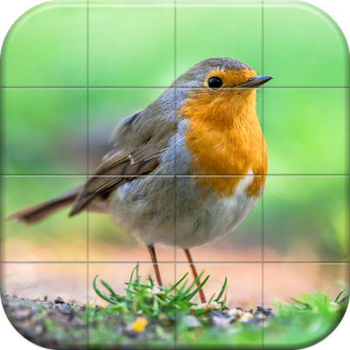 Sparrows Puzzle  Android Modded file download (Unlimited money,Mod)1.15  apk no root