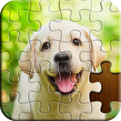 Jigsaw Puzzle 3.80.001 (Unlimited money,Mod) 3.80.001
