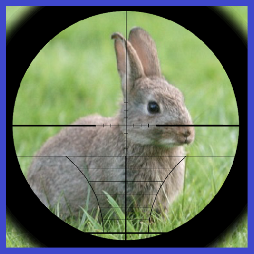 Rabbit Hunter  (Unlimited money,Mod) for Android 3.5