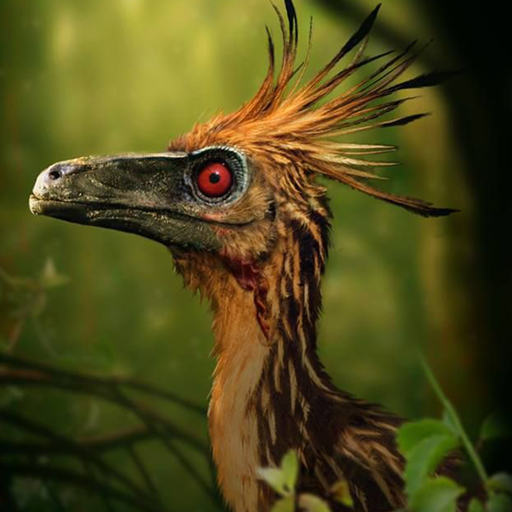 Troodon Simulator  (Unlimited money,Mod) for Android 1.0.2