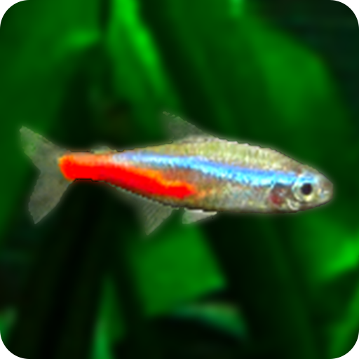Mini Aqua: Tropical Fish Tank  (Unlimited money,Mod) for Android