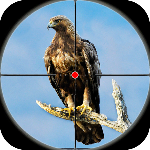 Desert Birds Sniper Shooter – Bird Hunting 2019  (Unlimited money,Mod) for Android 4.0