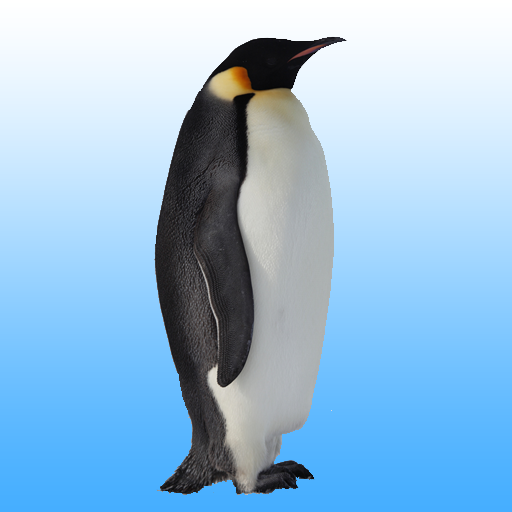 Flying penguin  (Unlimited money,Mod) for Android 1.24