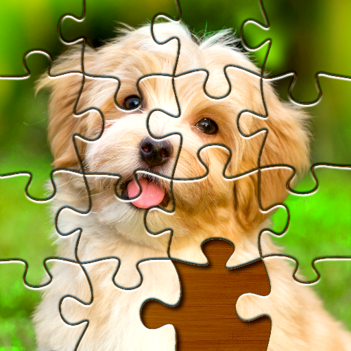 Jigsaw Puzzles Pro 🧩 – Free Jigsaw Puzzle Games  (Unlimited money,Mod) for Android 1.4.0