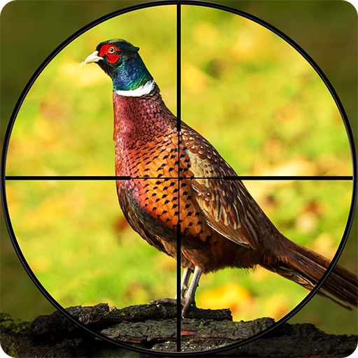 Pheasant Shooter: Crossbow Birds Hunting FPS Games  (Unlimited money,Mod) for Android 1.1