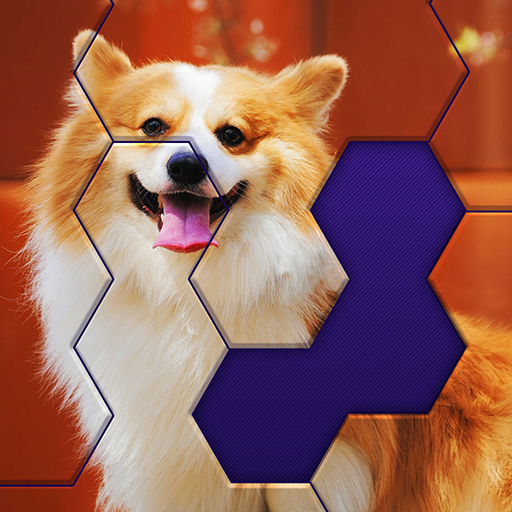 Hex Block Jigsaw  1.5.4 (Unlimited money,Mod) for Android