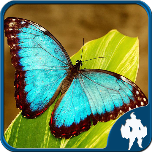 Butterfly Jigsaw Puzzles  (Unlimited money,Mod) for Android 1.9.17