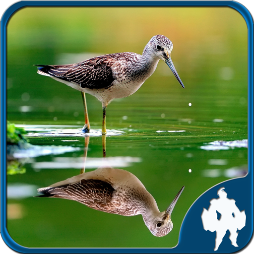 Reflection Jigsaw Puzzles  (Unlimited money,Mod) for Android 1.8.4