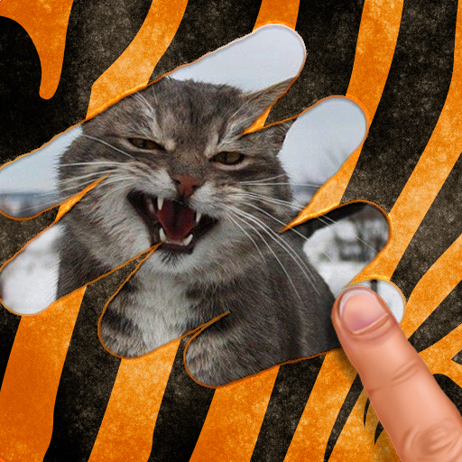 Scratch and guess the animal (Unlimited money,Mod) for Android 9.1