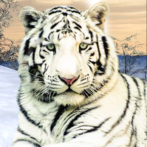 Wild White Tiger: Jungle Hunt 2021  (Unlimited money,Mod) for Android 1.6