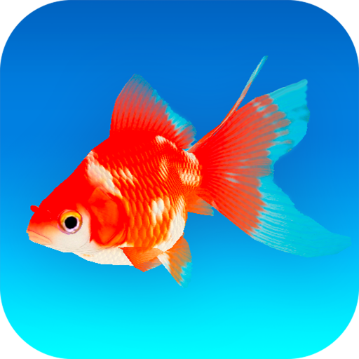 Goldfish 3D – Relaxing Aquarium Fish Tank  1.70 (Unlimited money,Mod) for Android