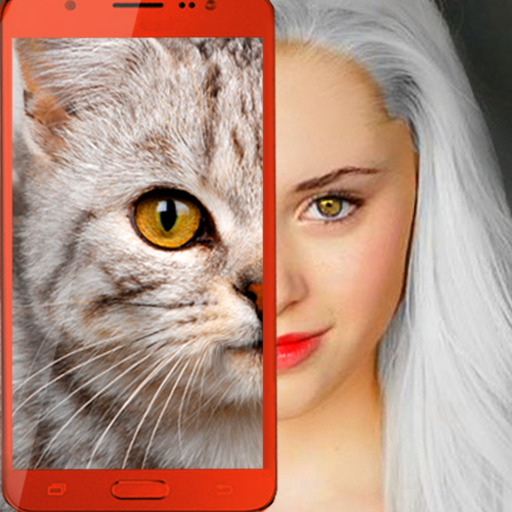 Kittens: what cat are you? prank 2.7 (Unlimited money,Mod) for Android