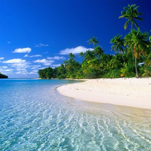 Beach Jigsaw Puzzles  (Unlimited money,Mod) for Android
