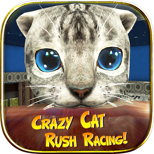 Crazy Cat Rush Racing Run Kitty Craft  (Unlimited money,Mod) for Android