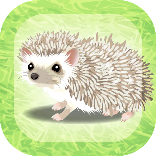 Hedgehog Pet  (Unlimited money,Mod) for Android